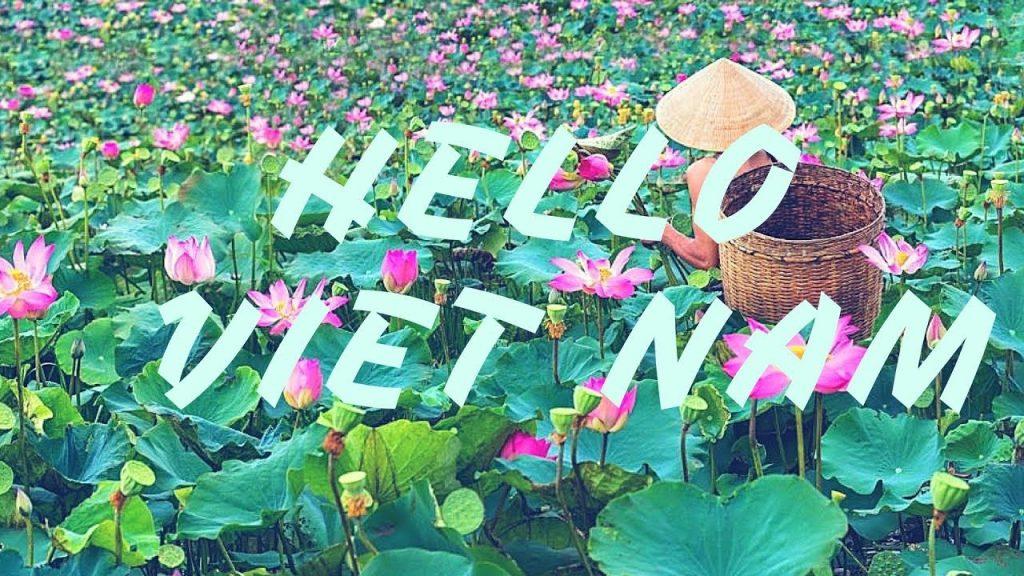 Hello & Thank you in Vietnamese